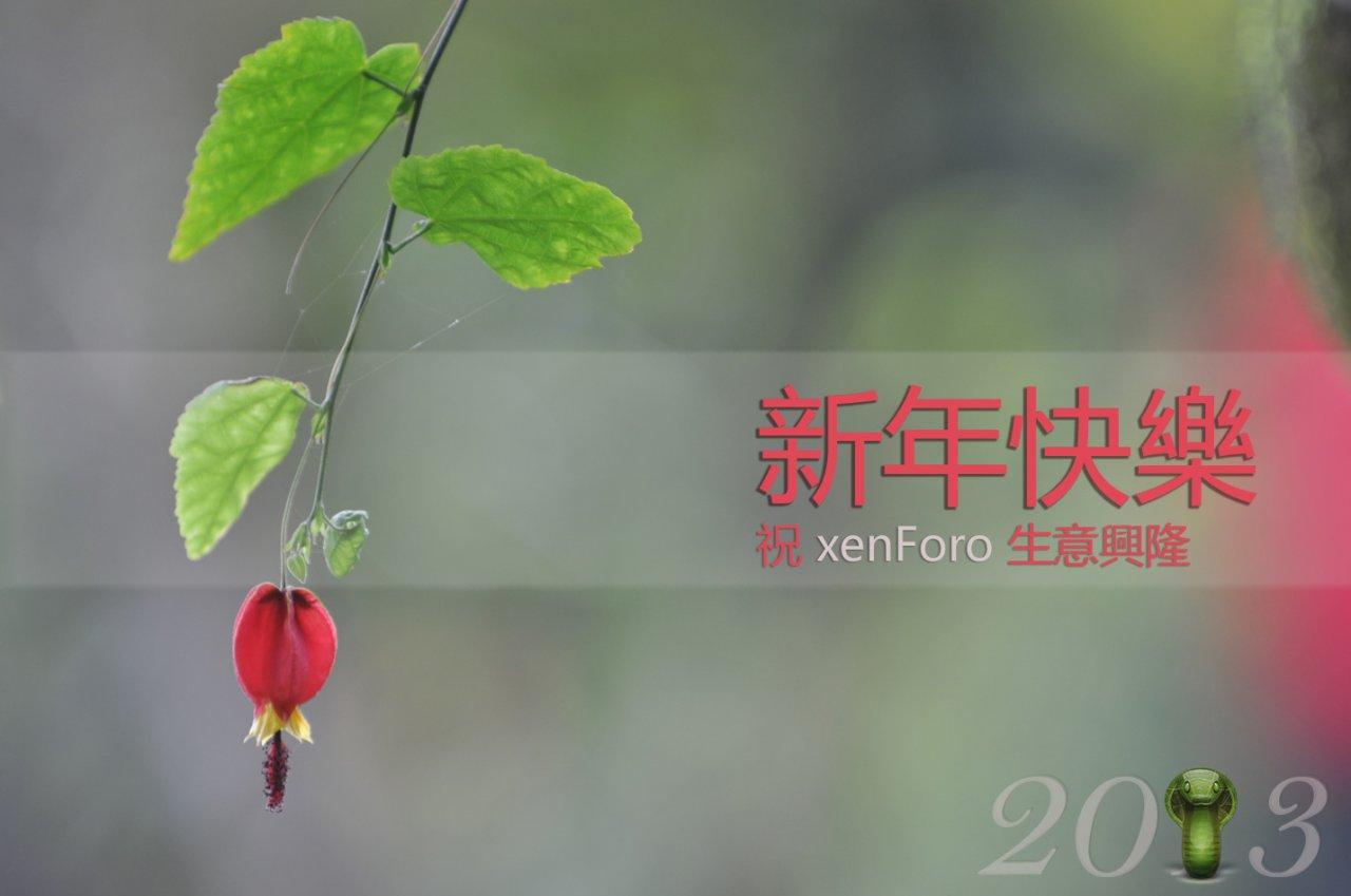 2013_xen_snake_year.jpg