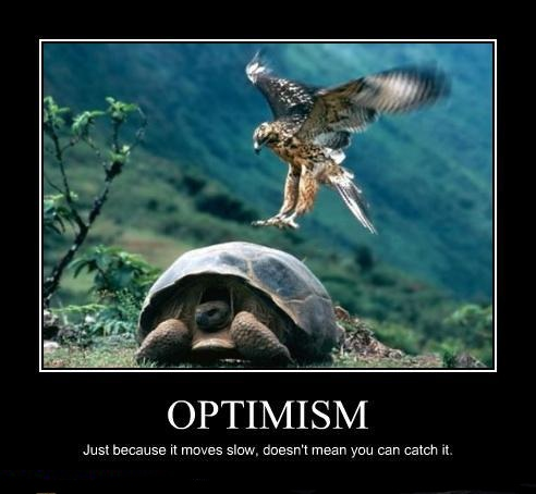 demotivational-posters-optimism.jpg