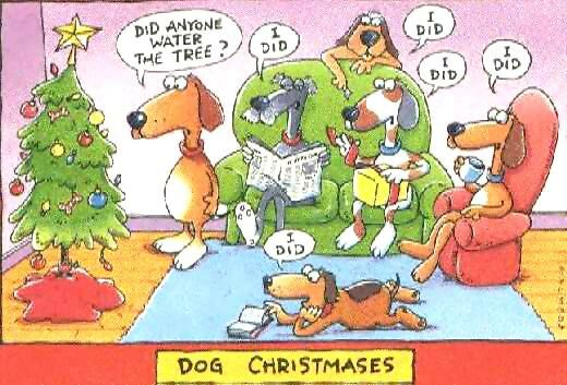 dogsatchristmas.jpg