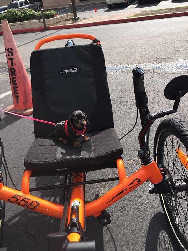 snickers-bike.jpg