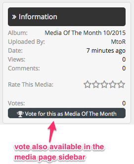 vote_in_media.png