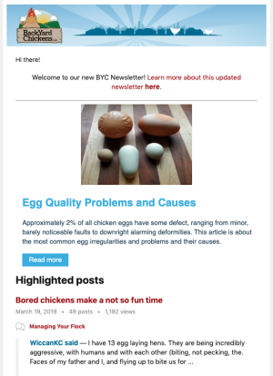 BYC Newsletter.png