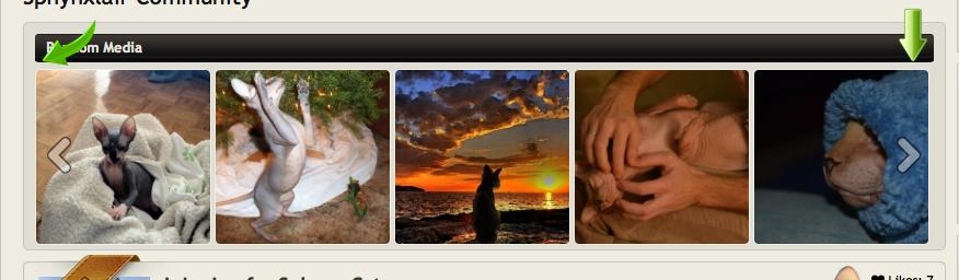 Screen Shot 2014-09-17 at 4.57.55 AM.png