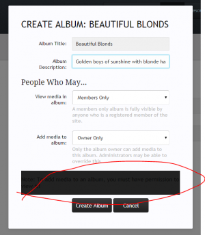 Create Album.PNG