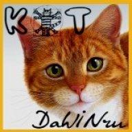 Кот ДаWINчи