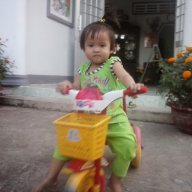 Minh Tri 2000