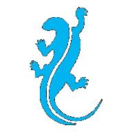 BoRzZoY