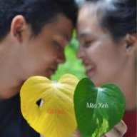 Lê Thanh Sang