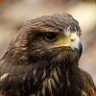 Hawk_345