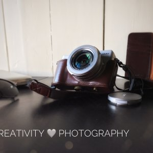 Lumix camera with Leica lens