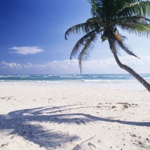 white_sand_beach-56d50c955f9b5879cc92cc5c.jpg