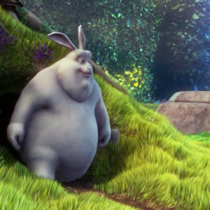 Video -- big buck bunny